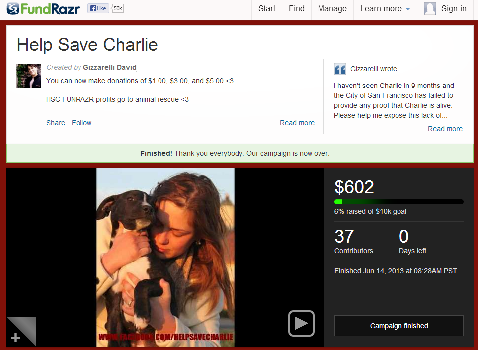Screenshot of FundRazr campaign to reclaim a dog from the city of San Francisco, CA.