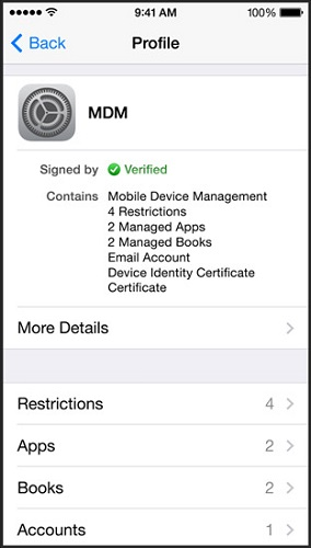 More mobile device management rools for IT administrators. (Image: Apple).
