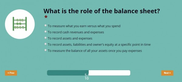 Intuit financial literacy quiz question - what is the role of the balance sheet?