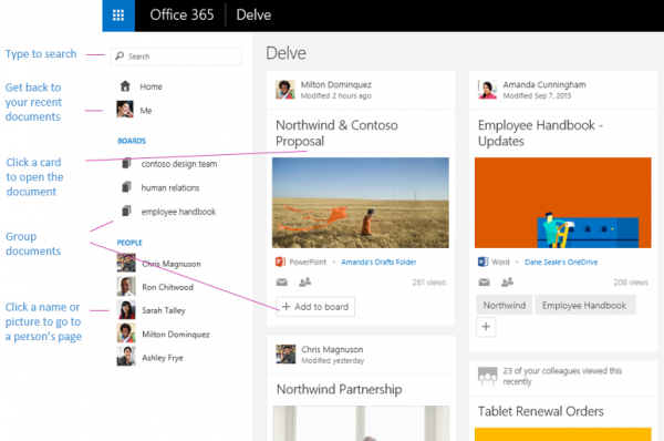 Office-Delve-overview