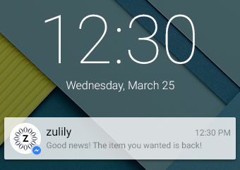 Messenger for Business allows for push notifications to be sent to customers.