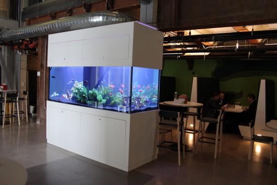 barrista bar aquarium