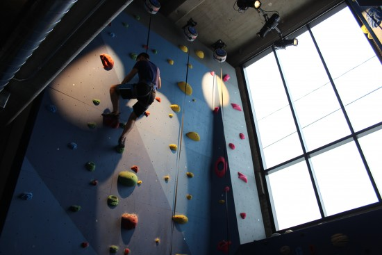 climbing wall - Google office
