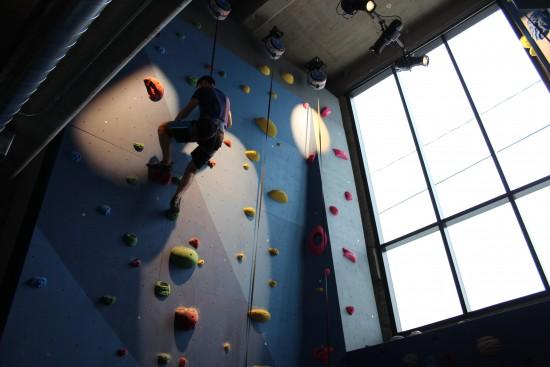 climbing wall - Google office