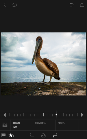Lightroom-for-Android-2.0-Screenshots_0008_Dehaze