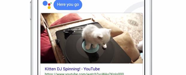 Google Allo - feature