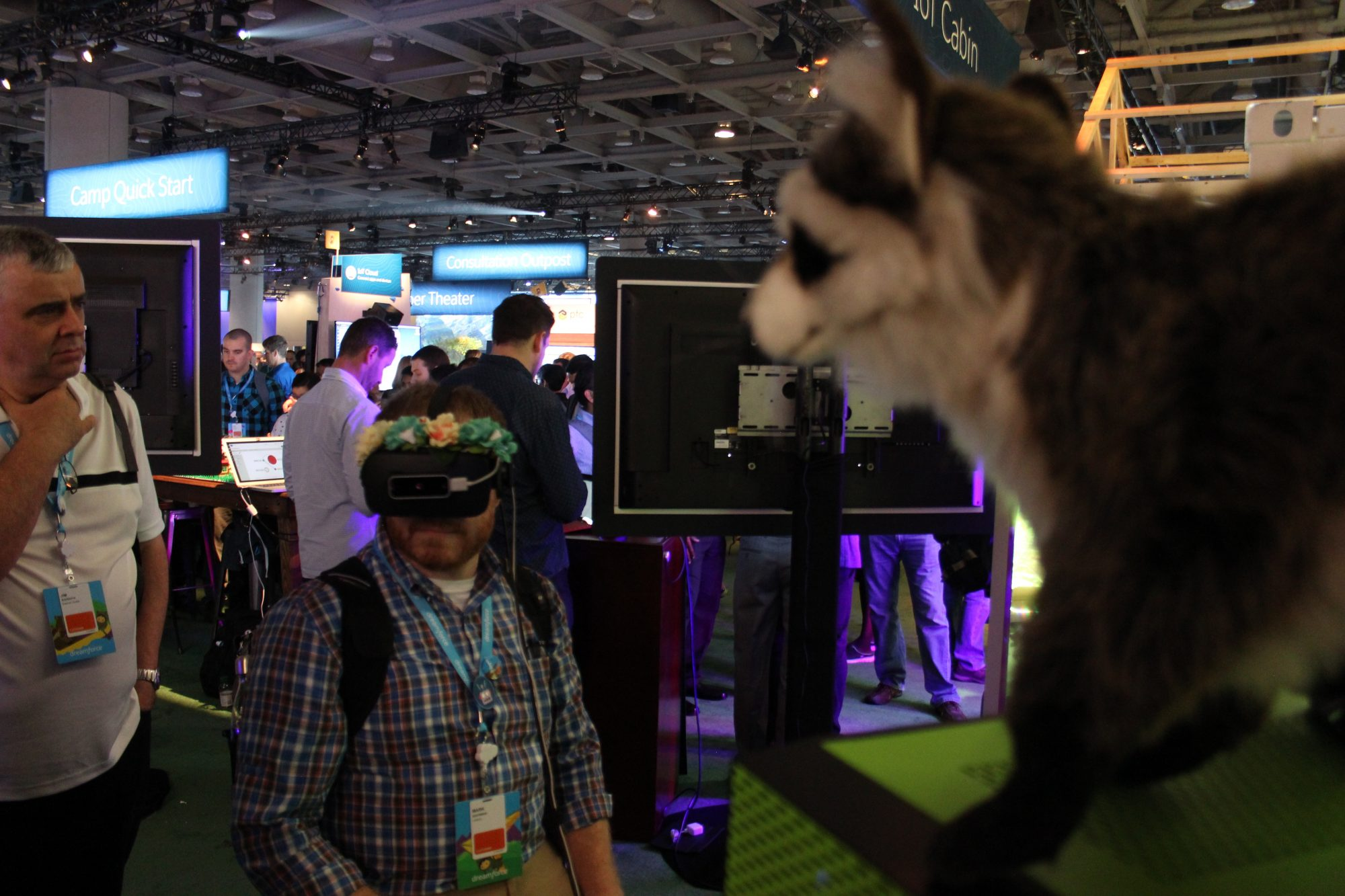 Salesforce VR - raccoon