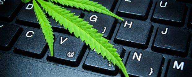 Marijuana on keyboard