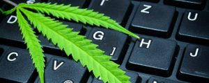 Marijuana on keyboard