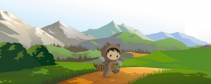 Trailblazer - Salesforce user group survey